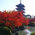 ものづくりベンチャー企業を支援する京都